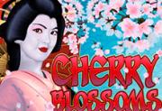 Цвет Вишни: слот онлайн с выигрышами